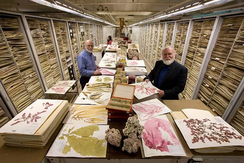 backroom-storage-at-the-smithsonian-natural-history-museum-etoday-03