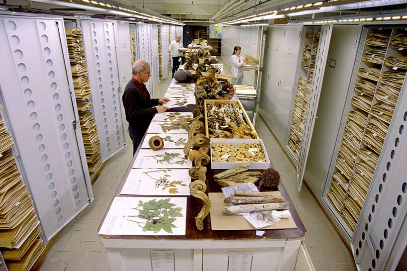 backroom-storage-at-the-smithsonian-natural-history-museum-etoday-05