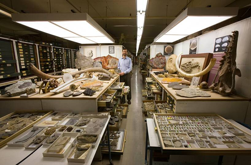 backroom-storage-at-the-smithsonian-natural-history-museum-etoday-07